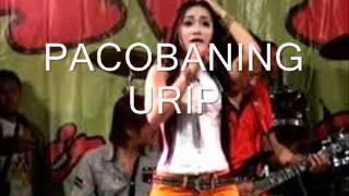 Pacobaning Urip - Vivi Soraya - OM SERA