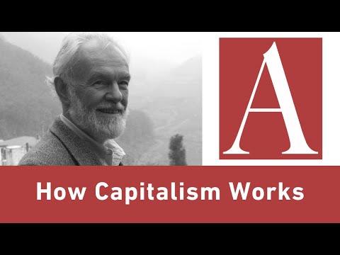 Anti-Capitalist Chronicles: How Capitalism Works