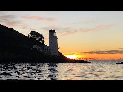 Sea Fishing Cornwall The Festive Edition - The Last Boat Trip Of 2019
