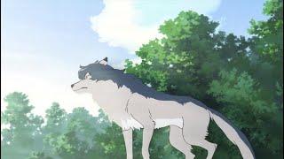 「AMV」Дикие волки. Клип. Аниме.