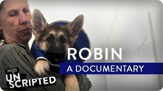 Robin: A Documentary | Wigs Unscripted