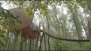 Ungewöhnlich übernachten: Natur und Nervenkitzel im Wolfcenter Dörverden