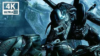 Alien vs Predator Fight Scene - Aliens vs Predator Game 4k 60FPS Ultra HD
