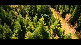 Тизер №2 фильма «Сумерки. Сага. Рассвет. Часть 2»