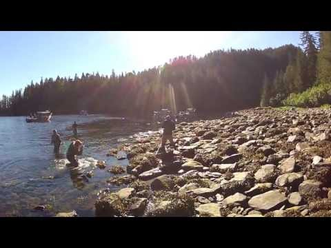 Alaska Fishing For Salmon