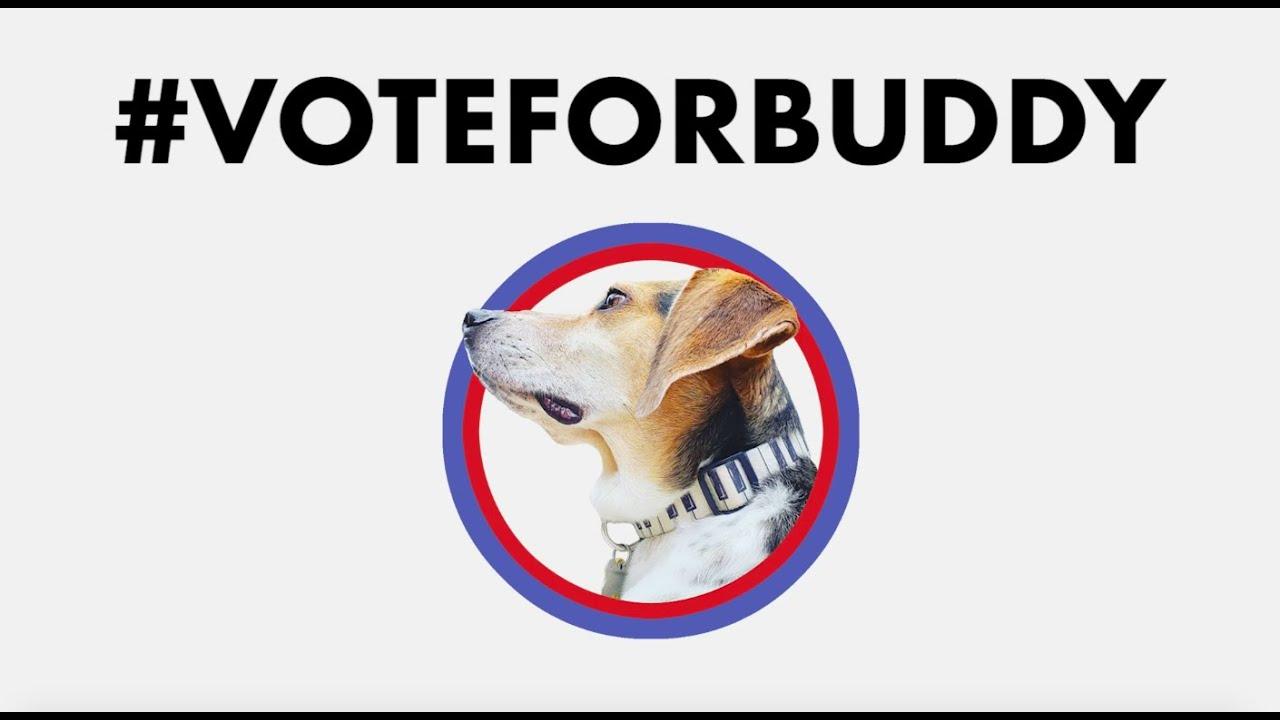 #VOTEFORBUDDY