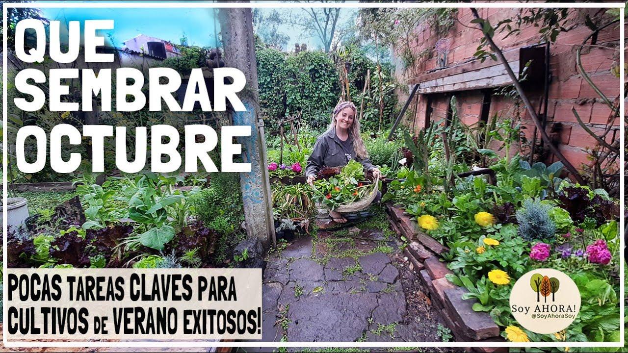 🍅QUE SEMBRAR en OCTUBRE 2020//Tareas Clave para TREMENDA COSECHA de VERANO!/ Calendario de Siembra!🌽