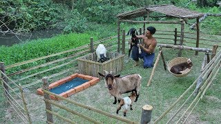 Rescue Goat To Build Amazing House For Goat And Goat Playground
