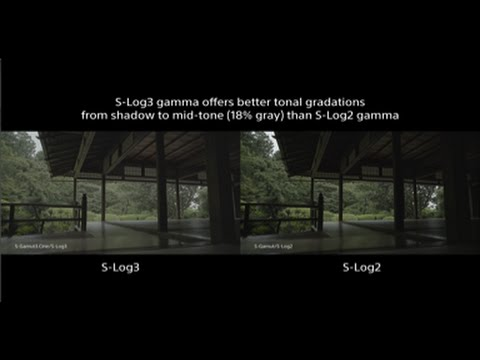 α7S II - S-Gamut3.Cine/S-Log3 and S-Gamut3/S-Log3 movie | α | Sony