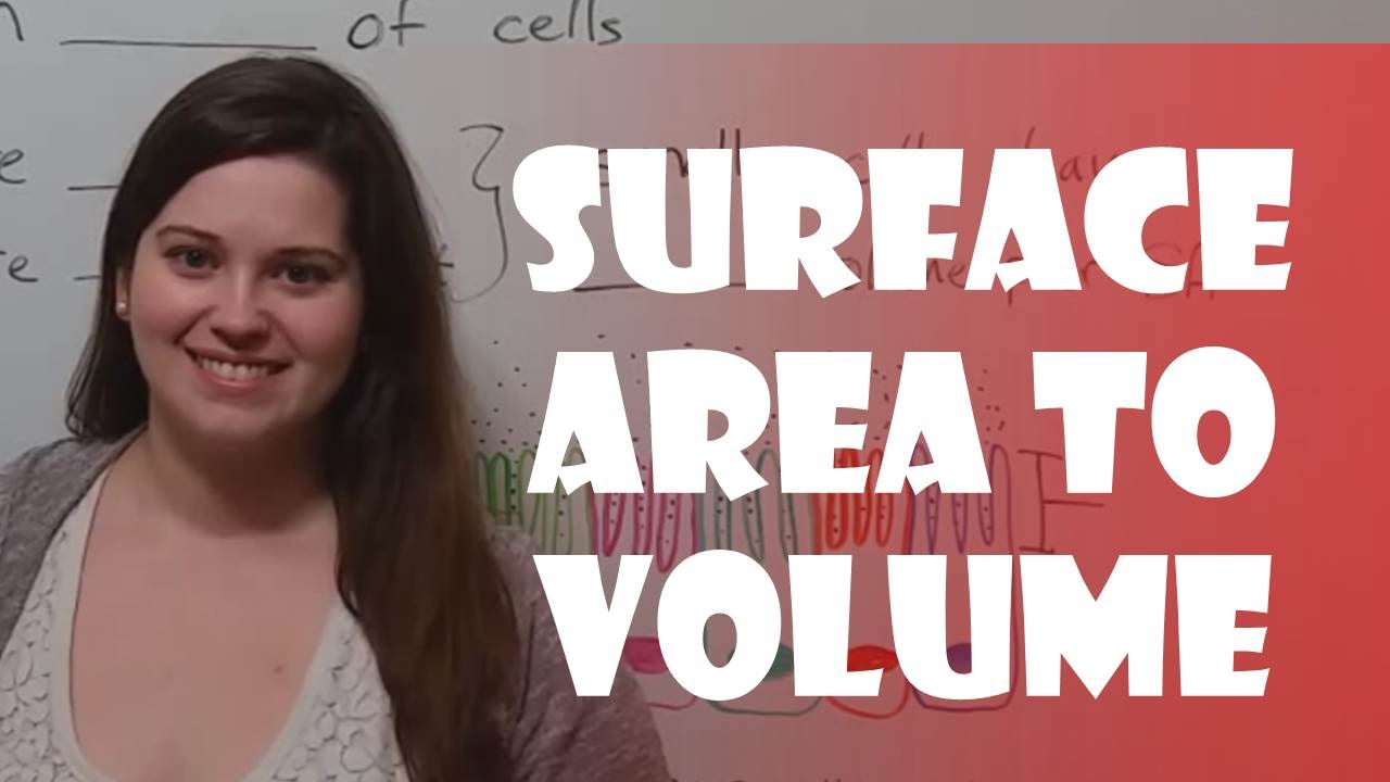 how to find ratio of volumes