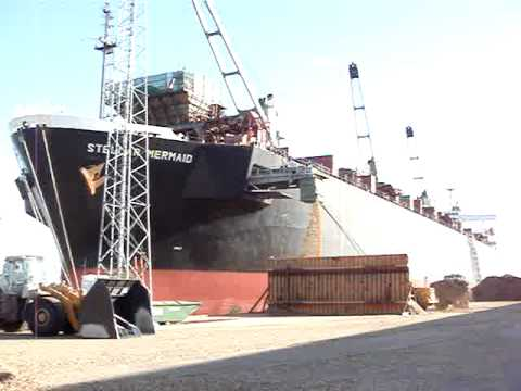 Woodchip Carrier Discharging