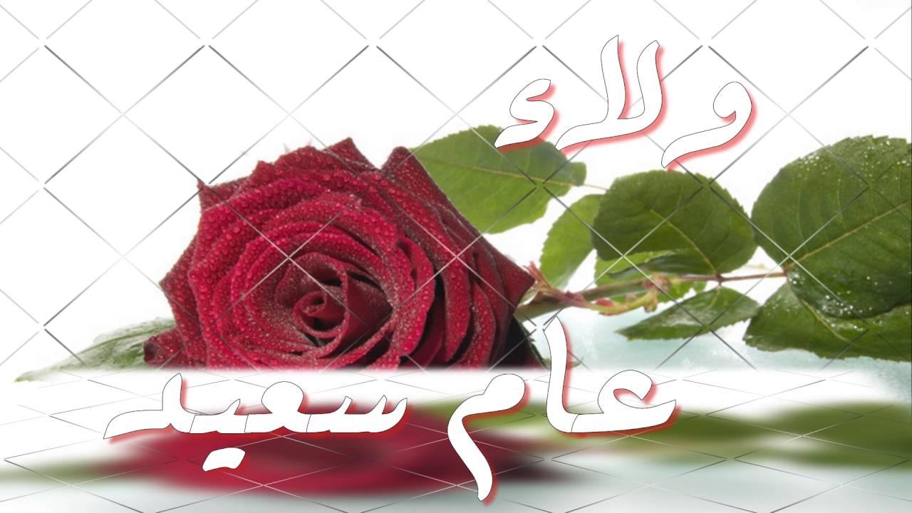 عيد ميلاد احلى ولاء وردة العائله وأغلى البشر Youtube