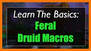 7.3.5 Feral Druid Macros [WOW Legion] - Focus, Mouseover, Stopcasting, Modifier