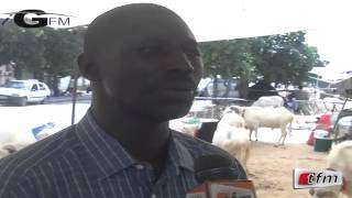 Français spécial, un éleveur parle du mouton dans un français comique