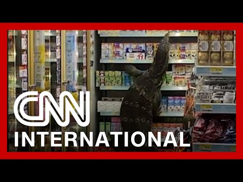 Giant monitor lizard freaks out shoppers in Thailand