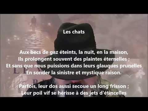 Les chats - Émile Nelligan lu par Yvon Jean