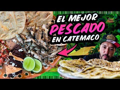Comimos el mejor PESCADO de la LAGUNA de CATEMACO, Veracruz.
