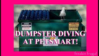 DUMPSTER DIVING FOR VALUABLE PET FOOD AND MERCHANDISE FROM THE PETSMART DUMPSTER! FREE DOG FOOD!
