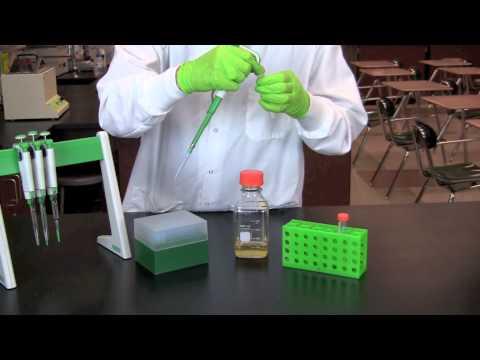 Making Microbiological Media