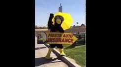 Bird at Fiesta Auto Insurance, Colton, CA