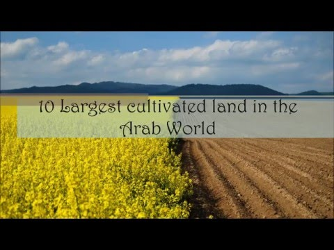 10 Largest cultivated land in the  Arab World