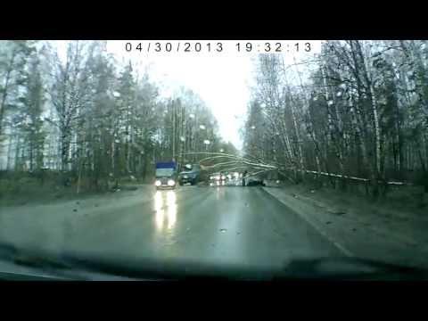 Дерево на дороге по Мочищенскому шоссе. 30 апреля 2013.