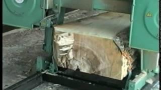 Стрічкопильна лісорама TTM 800