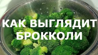 Капуста БРОККОЛИ - описание, питательная ценность