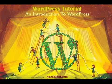Wordpress development company - top WordPress development company - YARDDIANT