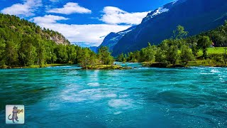 3 Hours of Amazing Nature Scenery & Relaxing Music for Stress Relief. screenshot 5