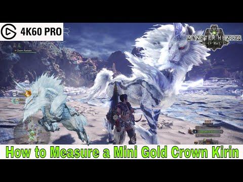 Monster Hunter: World - How to Measure a Mini Gold Crown Kirin