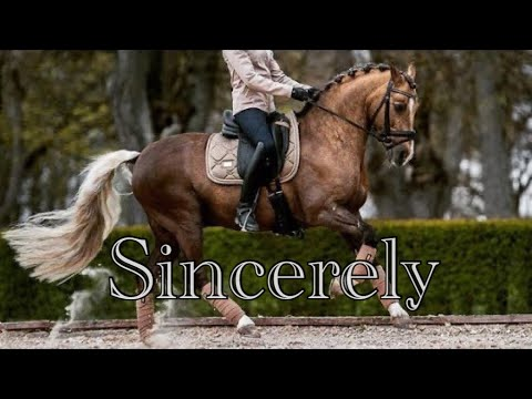 Sincerely || Dressage Music Video ||