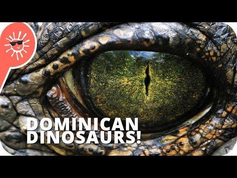5 Dinosaurs That Still Exist In Dominican Republic & Haiti
