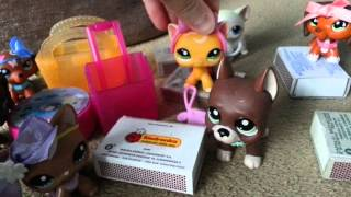 "LPS : ""Zakręceni"" #8 Littlest Pet Shop !"
