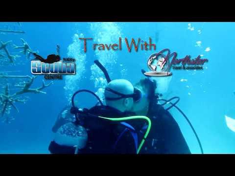 Travel | Curaçao - Dive With Tri-City Scuba and Northfield Travel