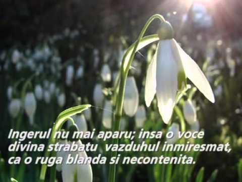 Legenda ghiocelului (Ingerul si ghiocelul - Iulia Hasdeu)