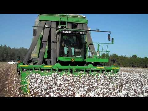 2009 Picking Cotton - DEJ Turner Farms