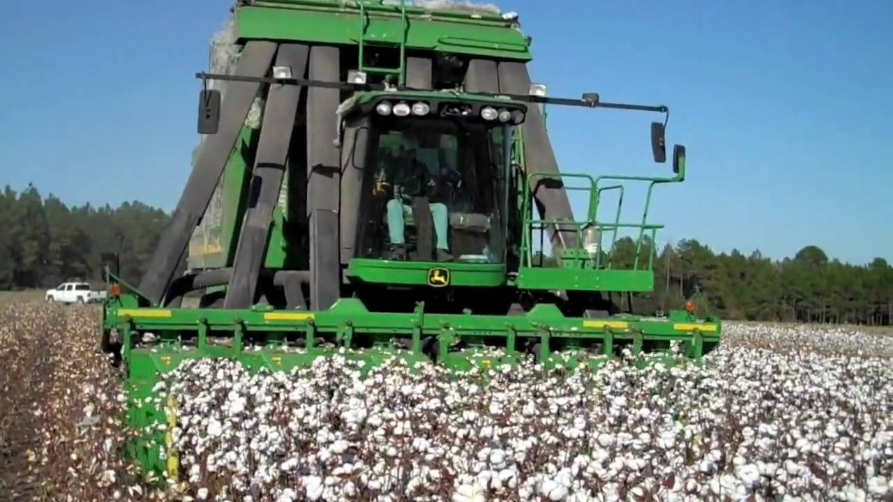 where to get a cotton machine