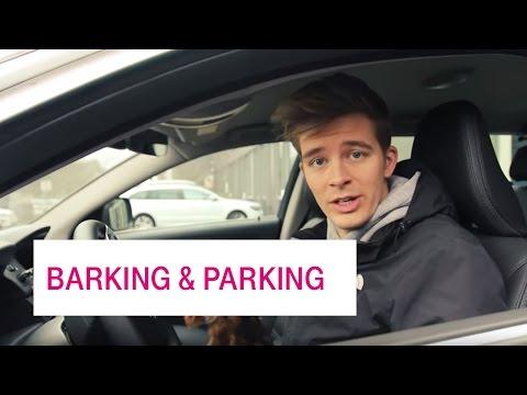 Social Media Post: Barking and Parking - Netzgeschichten