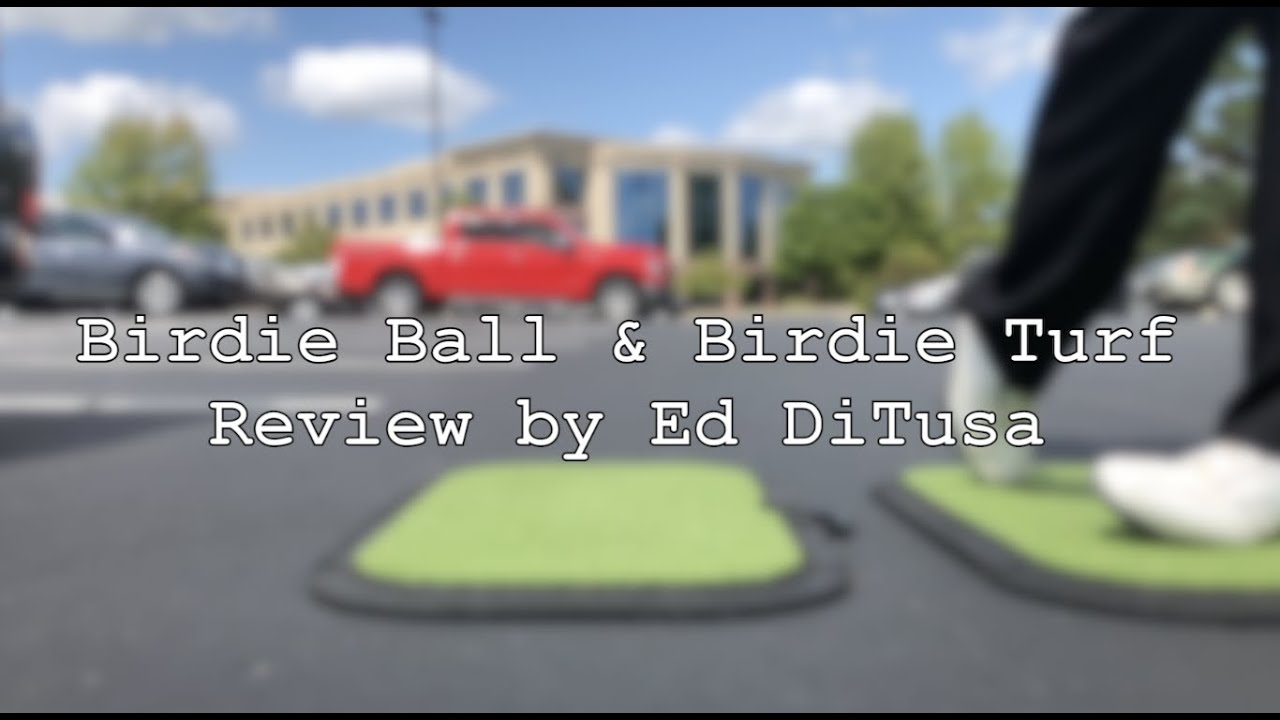 REVIEW: Birdie Balls, Do They Actually Work?