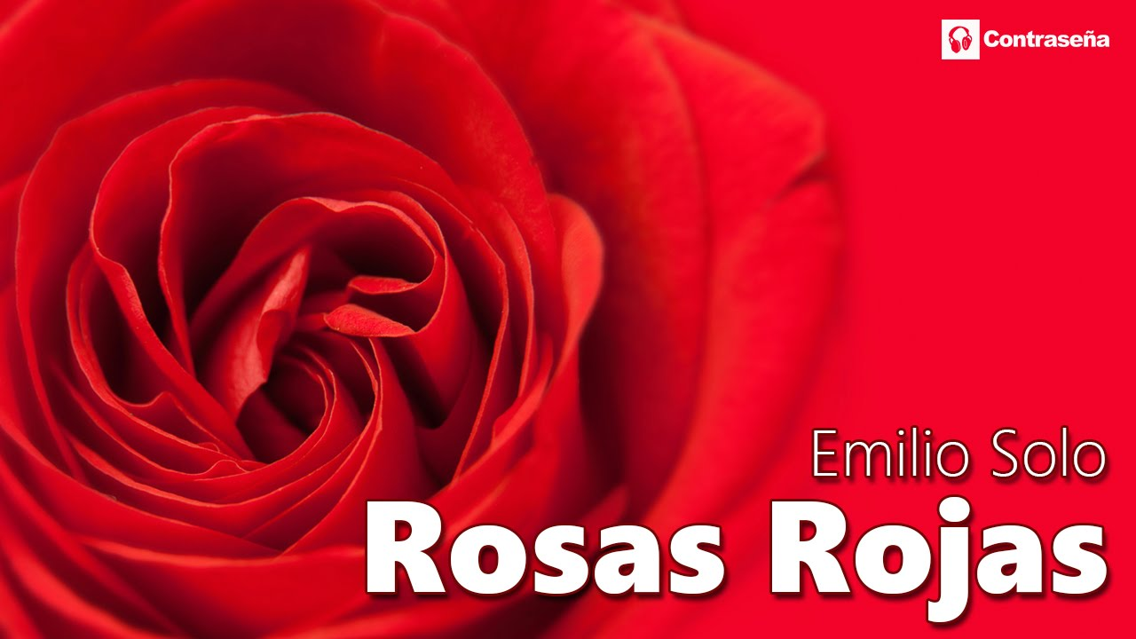 Rosas Rojas Romanticas En Español La Mejor Baladas Romanticas