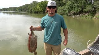 Soft Shell Turtle Catch Clean Cook