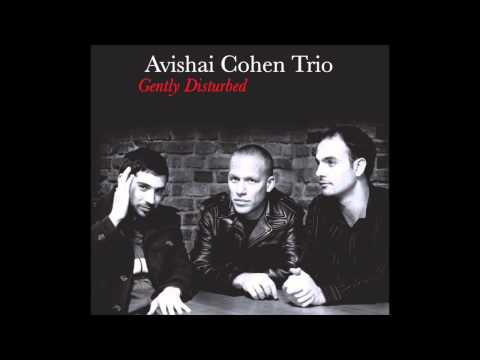 Avishai Cohen - Seattle