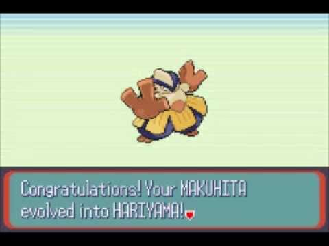 Makuhita (Pokémon) - Bulbapedia, the community-driven Pokémon ...