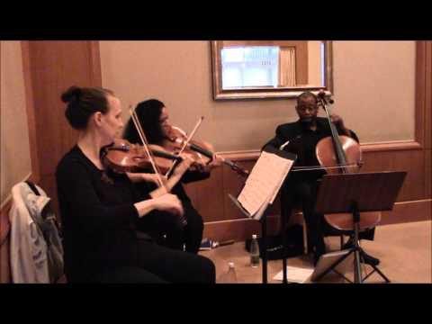 Traumerei from Kinderscenen Op. 15 #7 - Robert Schumann