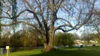 Repeat youtube video Yesuvil..en thozane..........sang by Kester