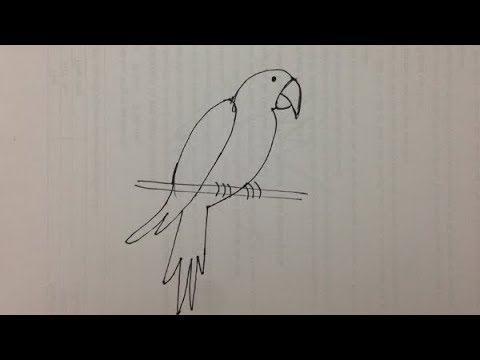 How to draw a Parrot for kids - Draw Parrot Step by Step ...