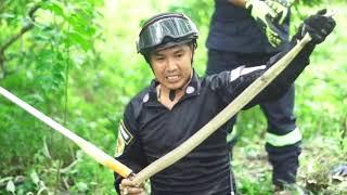 Biệt đội đi săn Hổ Mang Chúa Khổng Lồ trong rừng sâu và cái kết bất ngờ #2