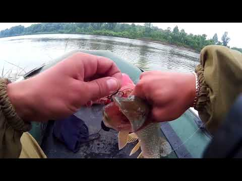 Рыбалка на ЩУКУ на реке Чулым