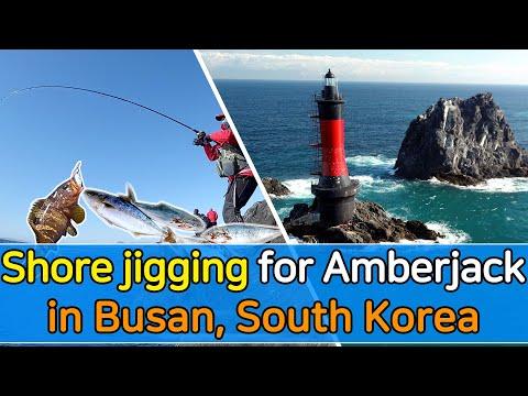 [ROCKYSHORE] Fishing Trip - #05 Shore Jigging For Yellowtail Amberjack In Busan, South Korea